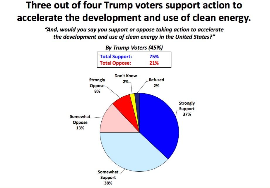 Trump Voter Clean Energy